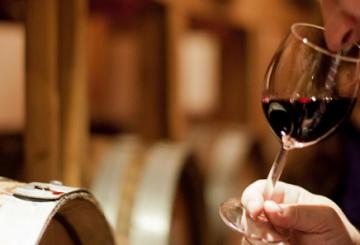 Vinprovningar i Sverige