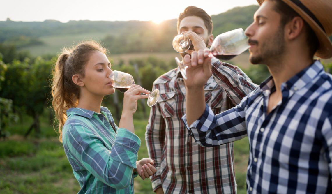 Lär dig mer om vin